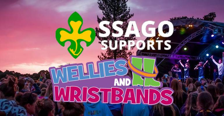 Wellies and Wristbands 2017